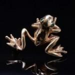 Yellow Gold Frog Pin