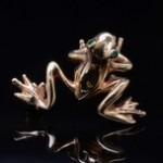 14k Yellow Gold Frog Pin